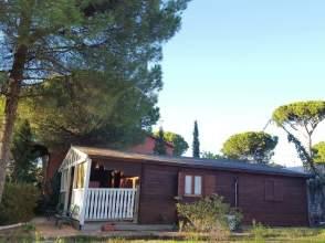 Finca rústica en venta en Camino de Montemayor, nº 20