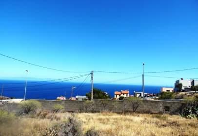 Terreny a Barranco Hondo