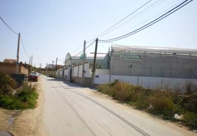 Terreno en calle Zambra
