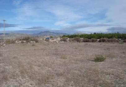 Terreno en La Alcayna