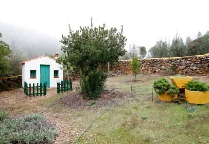 Finca rústica en San Vicente de Alcántara