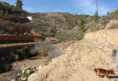 Rural Property in Arico El Nuevo