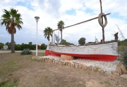 Terreno en Santa Margalida