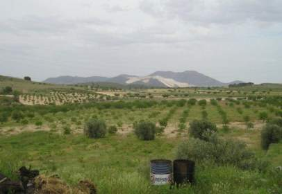 Rural Property in calle Torre del Rico