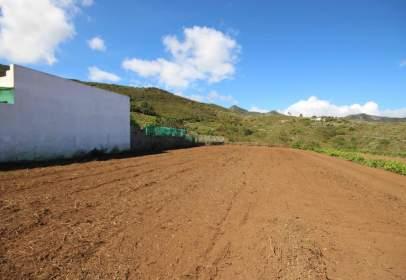 Terreny a calle Tierra del Trigo