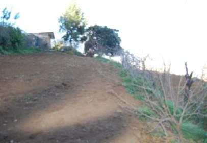 Finca rústica en Camino Pinolere