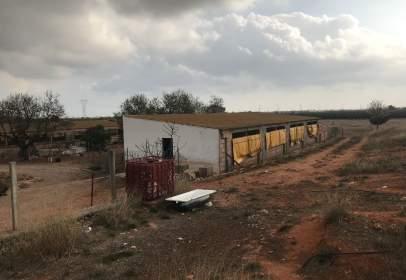 Terreny a Castellón de La Plana Ciudad - Oeste