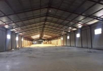 Industrial Warehouse in Carretera Palma del Rio
