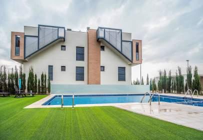 Guadalupe Murcia