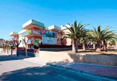 Roda de Bara Playa