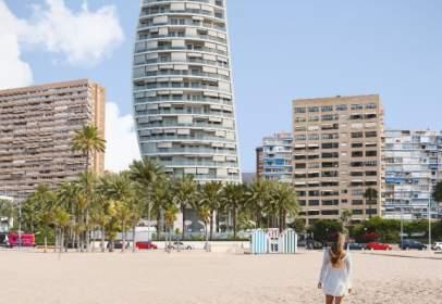 Delfín Tower