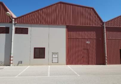 Industrial Warehouse in Carretas