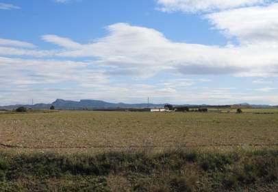 Rural Property in Jumilla