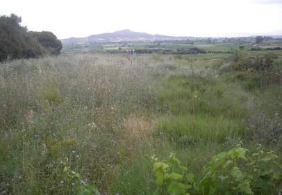 Rural Property in calle El Cotorro