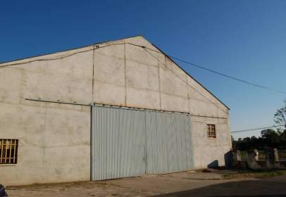 Industrial Warehouse in Carretera Serradilla