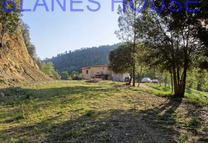 Rural Property in Massanes