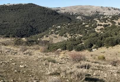 Finca rústica en Camino Cueva Murcielago Carretera de La Cañada de Rafael, Km 1