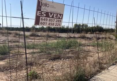 Land in Carrer Massalavés