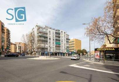 Pis a calle Palencia