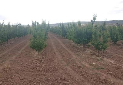 Rural Property in Pasaje Las Encebras, nº 1