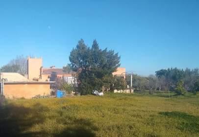 Rural Property in calle Muntanya