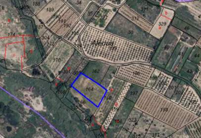 Land in calle Poligono 5 Parcelas 5-54-164-166-261, nº 326