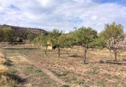 Terreny a calle de Teruel