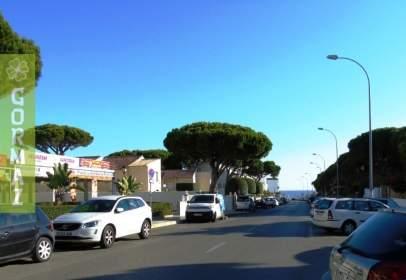 Apartamento en calle Playa de La Barrosa