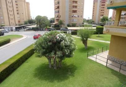 Apartament a Carrer Teodoro Llorente, 2