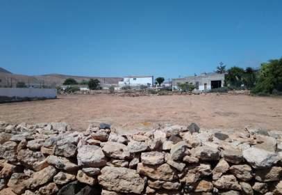 Terreno en Fuerteventura Golf Club