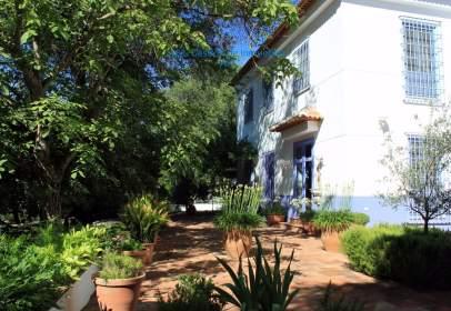 Finca rústica en calle Diseminado Salinas, 509, 29315, Málaga, España