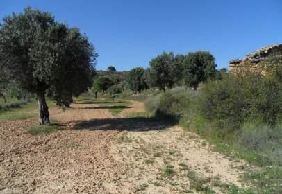 Terreno en calle Partida Vall Dels Tolls