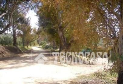 Terreno en Montilla