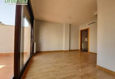 Penthouse in Carretas