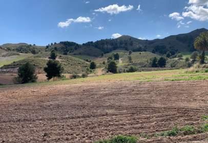 Casa en La Hoya-Almendricos-Purias