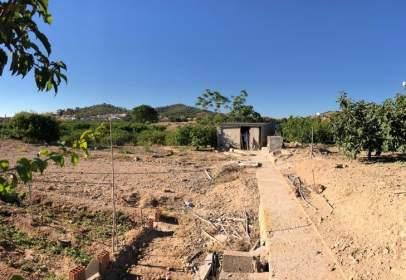 Terreno en El Esparragal