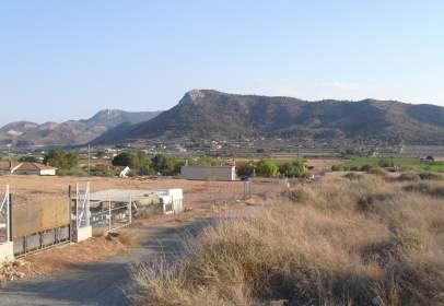 Terreny a Camino Caparrosa