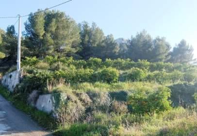 Terreno en Zona de Monte Pego - Benimeli