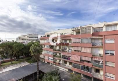 Estudio en Marbella Ciudad