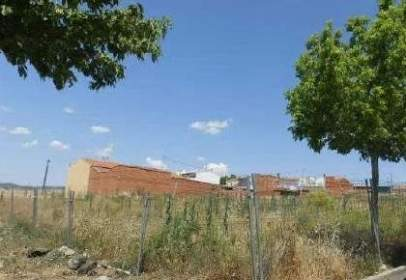 Terreno en calle de los Cipreses, nº S/N