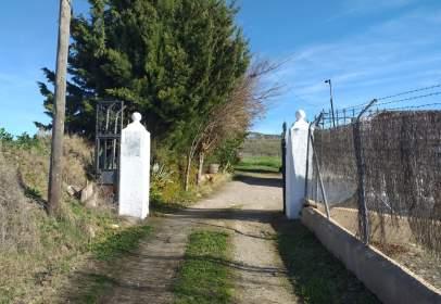 Rural Property in Arriate