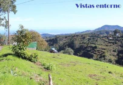 Rural Property in calle Barranco del Pinar-Lomo Las Quemadas