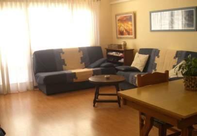 Apartamento en Puerto de Alcudia