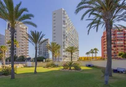 Apartament a Las Adelfas-Benicolada-Garduix