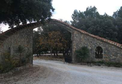 Rural Property in Camino Viejo de Granada