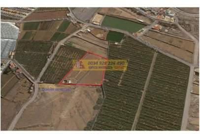 Terreny a calle Llano de Sardina (Plaza Perdida,Gáldar, Las Palmas