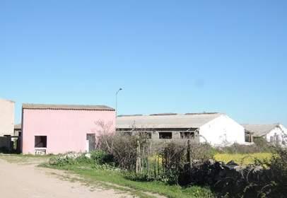 Land in calle El Honguillo Polig.3 Parcela 274