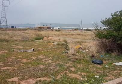 Terreno en calle Cariñena F.R.3077