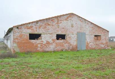 Industrial Warehouse in calle 116 Parcela 5527