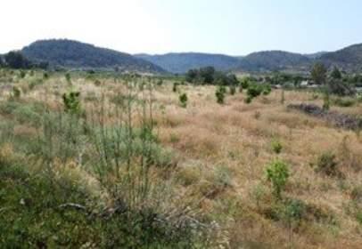 Land in calle Pla del Azud Polig.17 Parcela 132